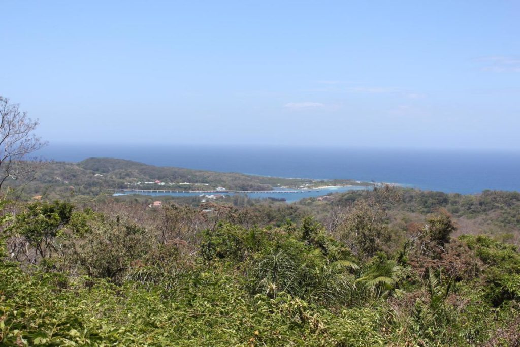 Brazill Hill